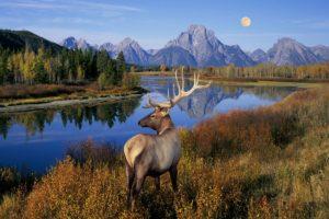 Астрологический прогноз на 07 — 13 октября