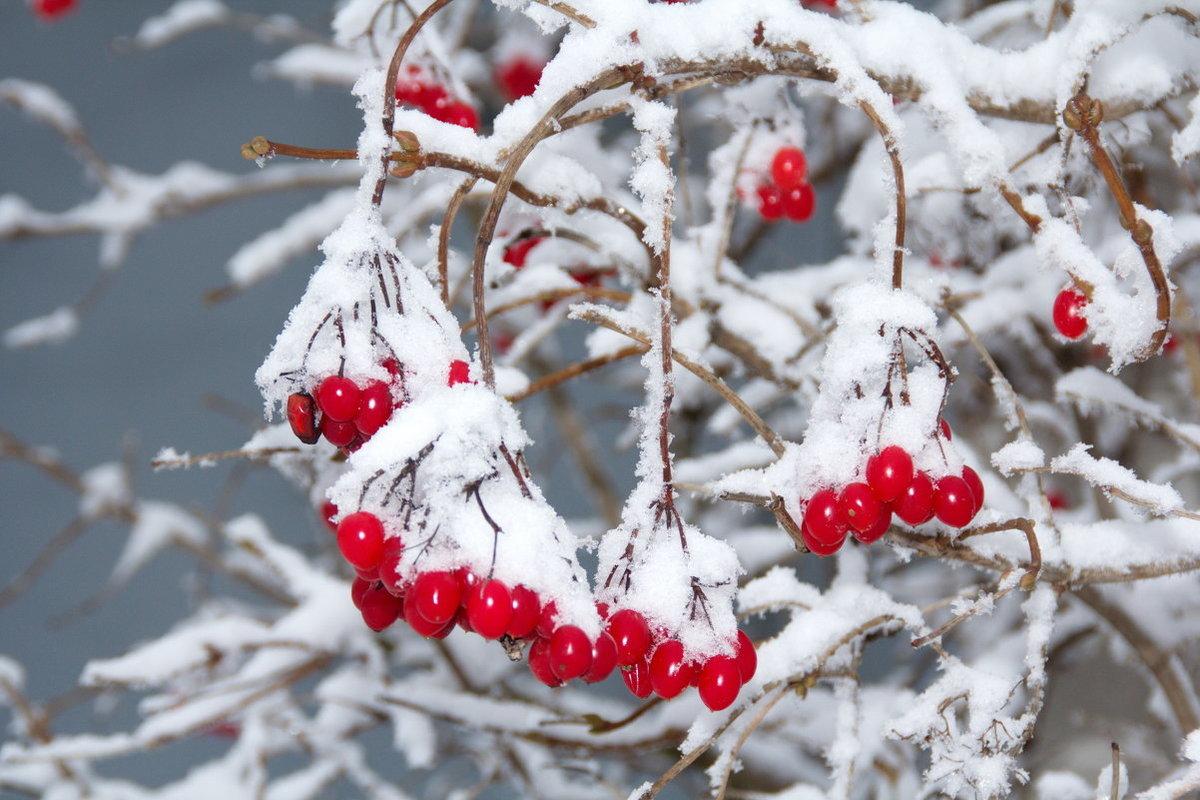 Календарь красоты на 16 — 22 декабря