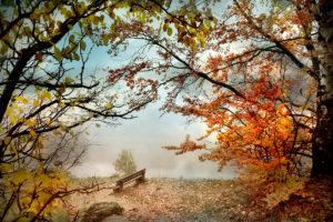 Астрологический прогноз на 05 — 11 октября