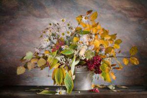 Календарь красоты на 09 — 15 ноября