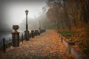 Астрологический прогноз на 02 — 08 ноября