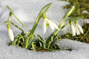 Астрологический прогноз на 1 — 7 марта