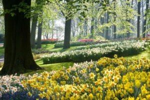 Календарь красоты на 11 — 16 мая