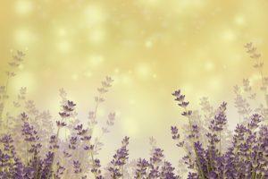 Календарь красоты на 17 — 23 мая 2021